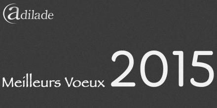 Voeux 2015